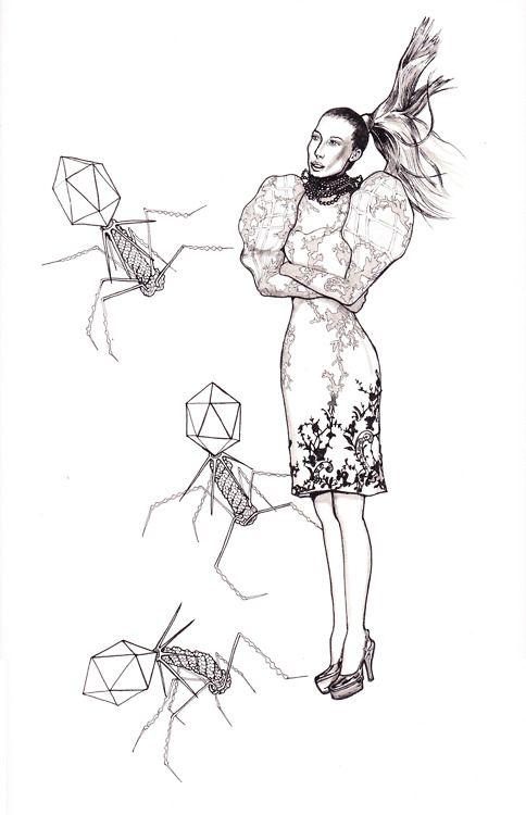 Another Fashion plate…with T4 bacteriophage! Ink and pencil on Arches