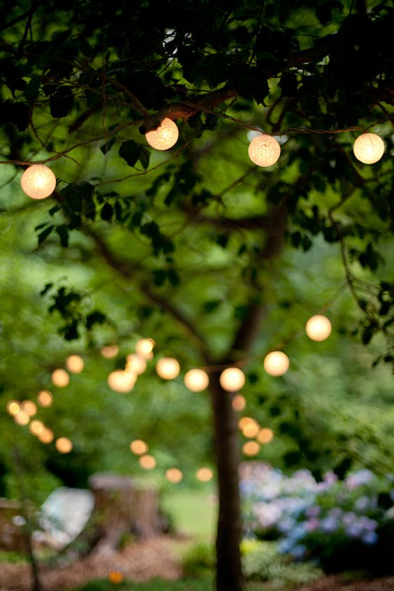 Fireflies In The Garden And Lights On Pinterest