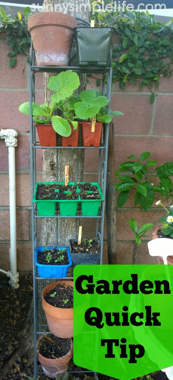 DIY seed starter stand from old dvd shelf