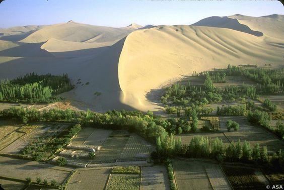Gobi Desert in the Sand Dunes
