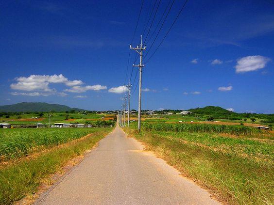 島の中央にある集落から海へ一直線に伸びた道。両側にサトウキビ畑が広がる。ドラマ「ちゅらさん」に登場したこともあって、島の名所となっている。