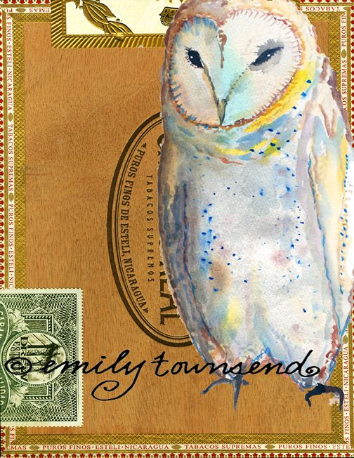 owl by Emily Townsend