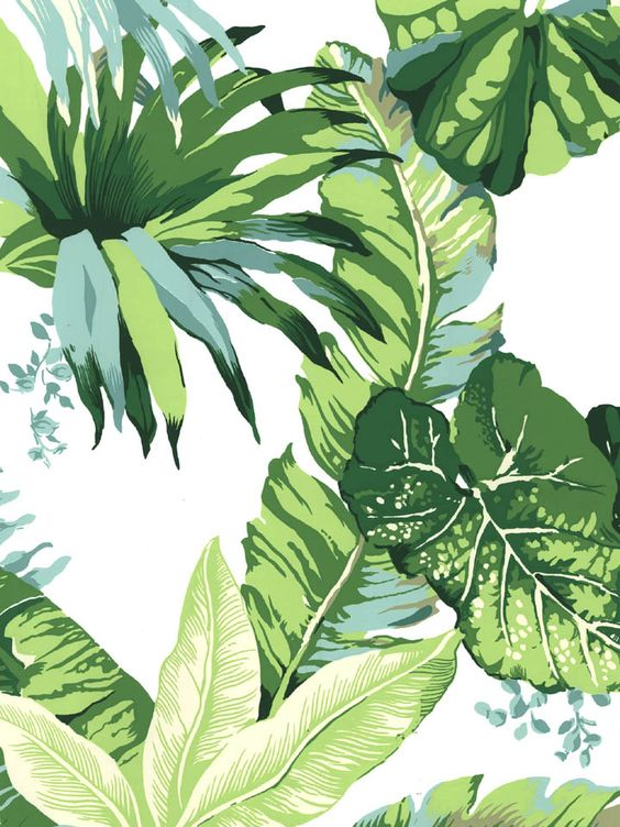 Stroheim Santa Barbara Wallpaper | AmericanBlinds.com #recency #hollywood #palm