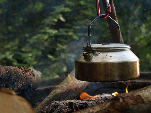 café en el bosque