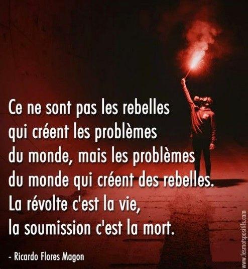 citation #rebelle #probleme #monde #revolte #vie #soumission #mort#photography  #photo | Experience quotes, Shenanigans quotes, Sober quotes
