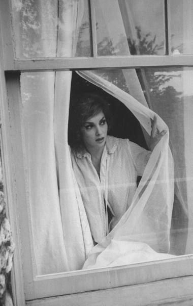 Image result for gina lollobrigida AT WINDOW