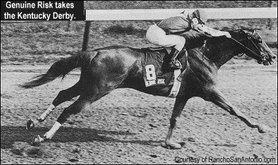 Genuine Risk Horse | Genuine Risk Kentucky Derby Winner