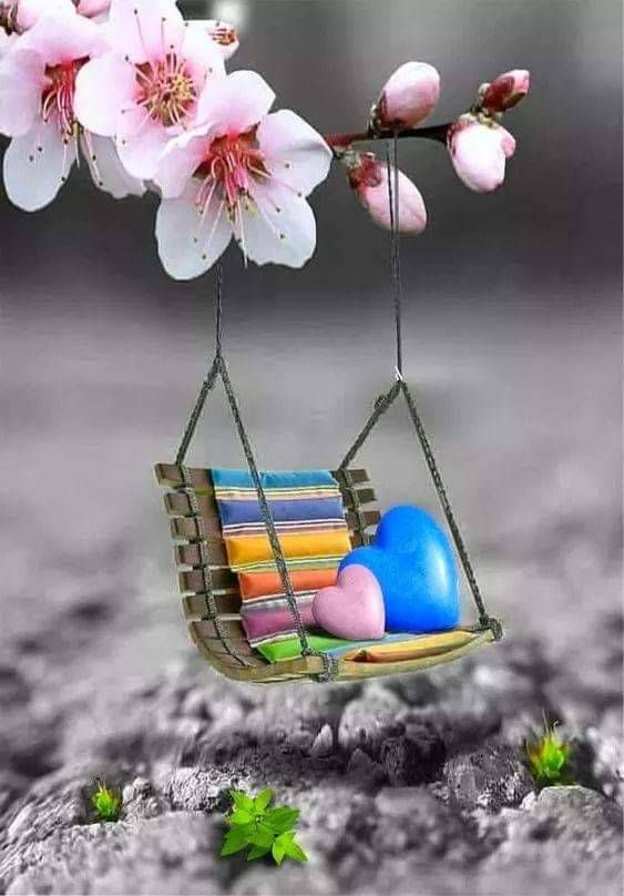 Pin By Judy Odette On Art Cute Wallpapers Miniature Photography Beautiful Nature Wallpaper