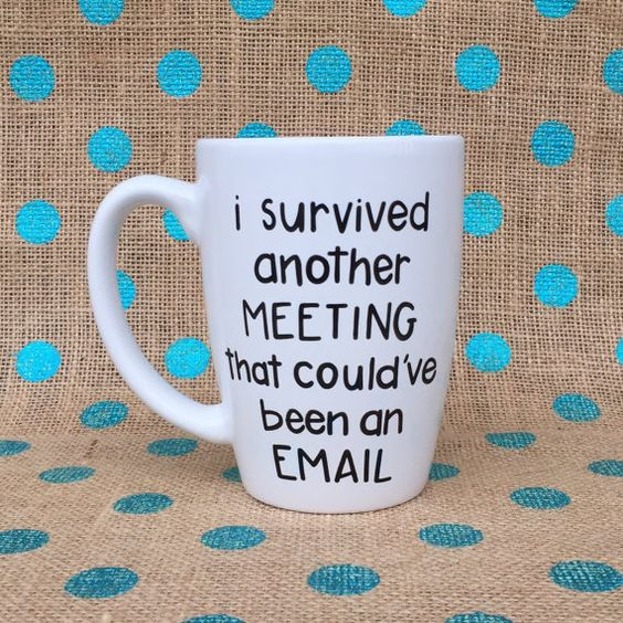 Funny Coffee Mug  Business Coffee Mug  I Survived by Hinzpirations