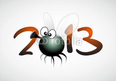 fliege_2013