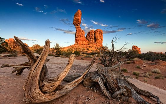 Arches National Park. There are 2000 naturally formed arches in Utah's Arches National Park, Delicate Arch is the most famous. Made of livid red and orange sandstone and are particularly stunning at sunrise or sunset.
