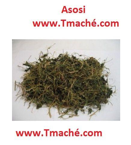 Asosi  You can order it @ Tmache.com