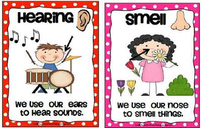 Krazee 4 Kindergarten: 5 Senses Poster Set- FREE DOWNLOAD