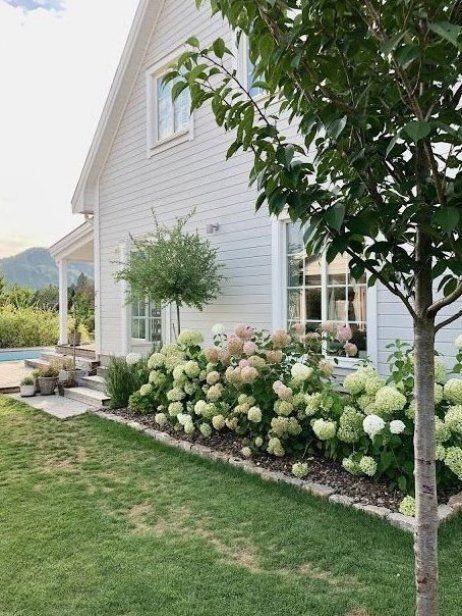 Hortensien Pracht Im Garten Gartendesign Garten Gartendeko Gartengestaltung In 2020 Cottage Garden Hydrangea Garden Outdoor Gardens