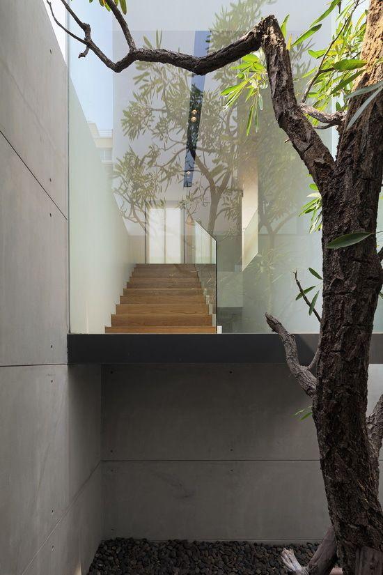 einfamilienhaus bankok glaswände baum innenhof dach
