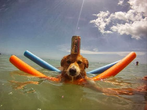 I am ready for the boat ride!!!!