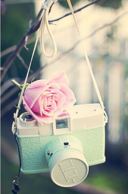... adorable vintage camera ...