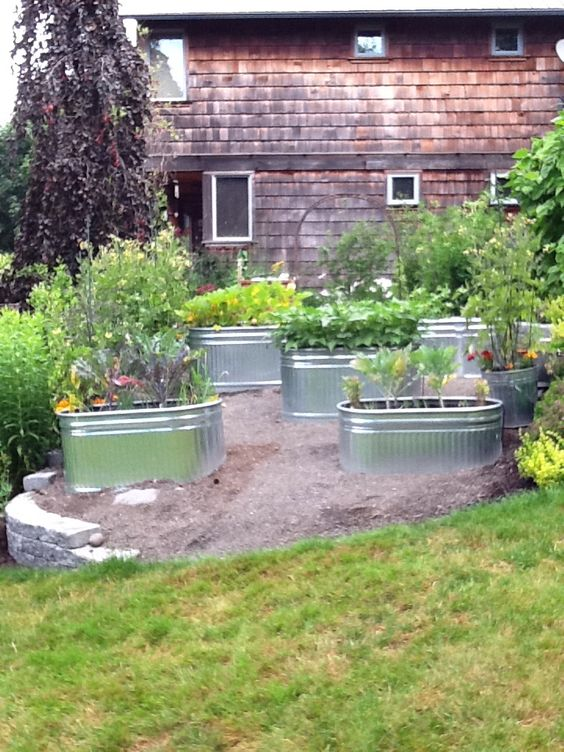 Galvanized tub raised gardens and tubs on pinterest