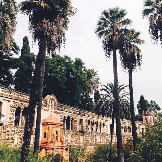Welcome to the garden of Eden #vscocam #alcazar #sevilla #paradise #palmtrees #iwanttolivehere