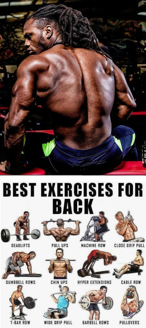 3 Beginner Pull Up Variations Good Back Workouts Back Exercises Bodybuilding Workouts