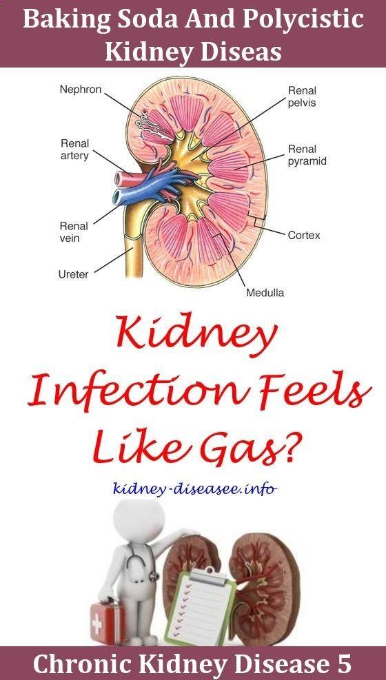 Rarekidneydisease Chronic Kidney Disease Woman Baking Soda Dosage For Kidney Disease Does Kidney Disease Cause Leg Cramps Diabetes And Kidney Disease Symptoms T