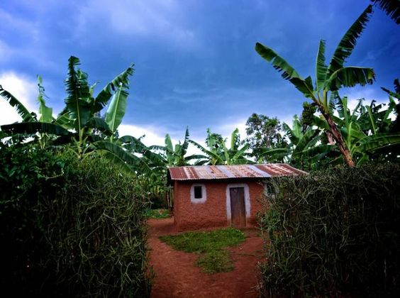 Focus on Land   Curbs on Land Use Rights in Rwanda: The 'Bundle of Rights' in Context   Countries