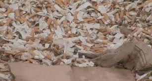 Imagini pentru groapa de gunoi la romani in imagini