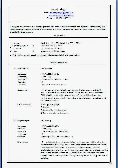 beauty resume Beautiful Excellent Professional Curriculum Vitae - resume doc format
