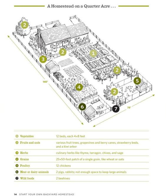 Acre Farm Layout And Farms On Pinterest