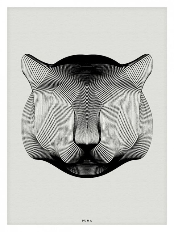 Animals in Moiré / Andrea Minini   AA13 – blog – Inspiration – Design – Architecture – Photographie – Art