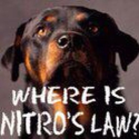Do some research on NITRO'S LAW!!