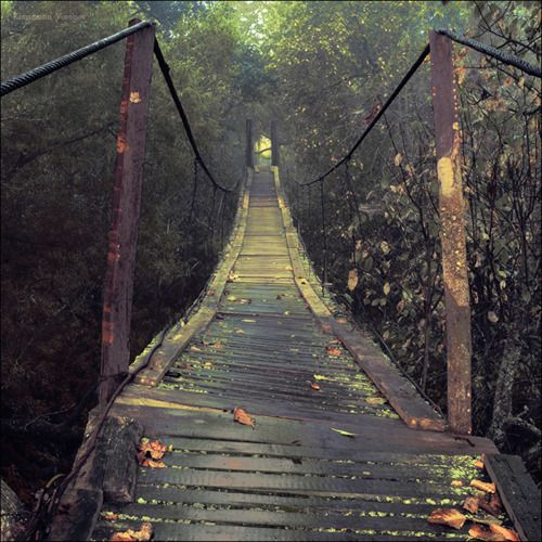 an autumn bridge.