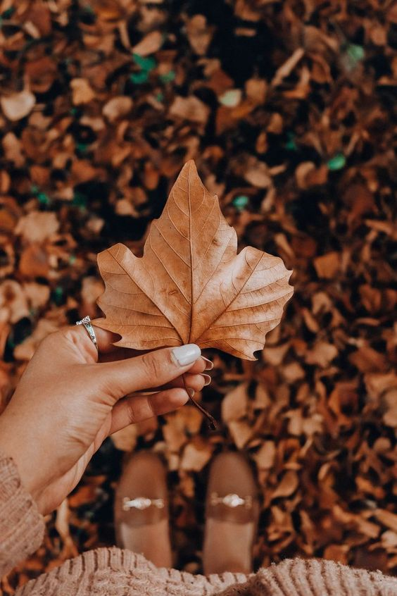 Autumn is a second spring, every leaf is a flower #autumn #autumnvibes #il ... - #autumn #every #flower #second #spring - #Genel