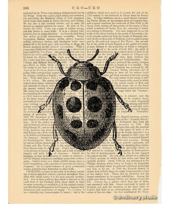 Vintage Insect 92