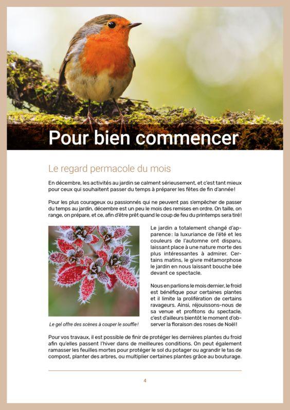 Le Club D Une Saine Abondance En 2020 Permaculture Amenagement Jardin Plantes Sauvages