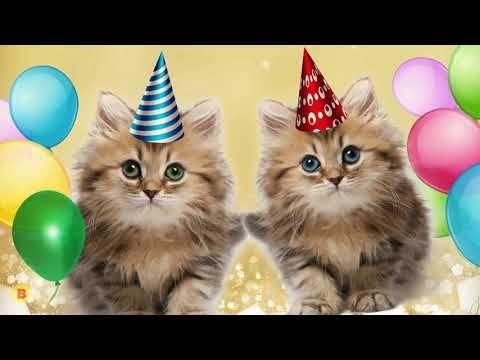Pin On Happy Birthday Video