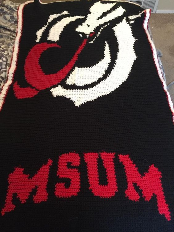 Any Picture or logo into an afghan by AllJazzeredUp on Etsy