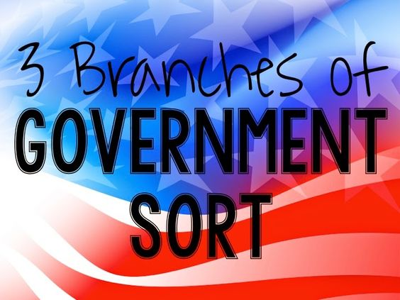 FREE Branches of Government Card Sort-These task cards will reinforce the concept of the three branches of government!
