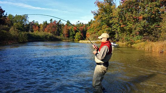 Betsie River Salmon fly fishing report by Michigan fly fishing guide Kelly Neuman.