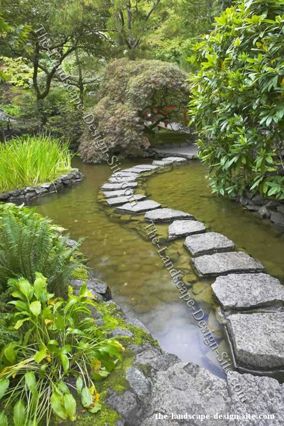 Stepping stones garden path through a pond gardening for Rock ponds designs