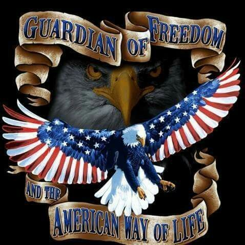 Guardian of Freedom #America #Proud #Eagle | Patriotic pictures, American flag, I love america