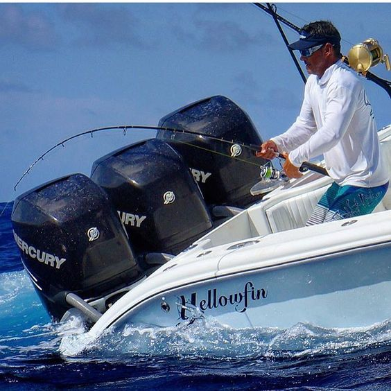 Yellowfin Fishing Boats Mercury Outboard Engines Yellowfin - Blue fin boat decalsblue fin sportsman need some advice pageiboats
