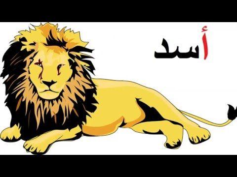 حرف الالف بالحركات للاطفال مع انشطة وتدريبات بالمشبك حديثة Pdf مجانا Learning Arabic Educational Videos Education