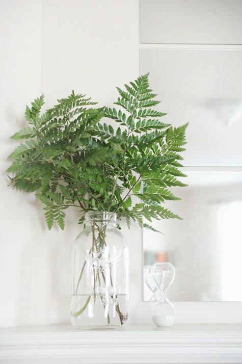 only ferns in a vase. i love them but i never really thought of this. love it.