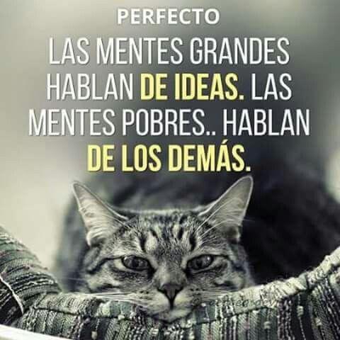Las mentes grandes hablan de ideas.  Las mentes pobres hablan de la demás...