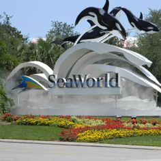 seaworld san diego | SeaWorld San Diego Coupons, Discounts, and Tips | The…