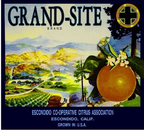 Escondido Grand-Site Orange Citrus Crate Label Print
