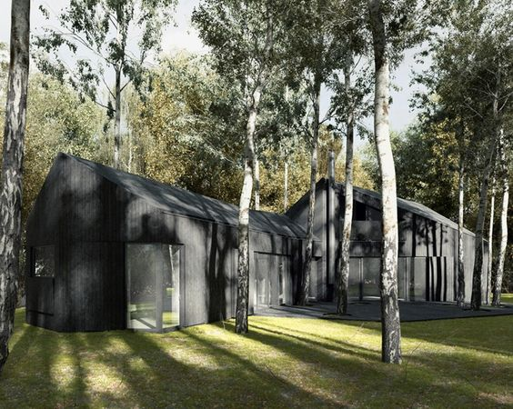też architekci designs polish country house with black thermowood cladding