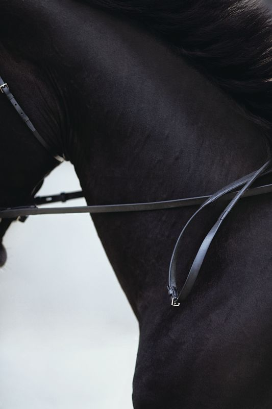 Here at equestrienne living we are absolutly loving this!!! -Photo: Giampaolo Vimercati #Hermès