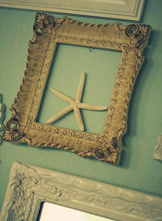 A frame collage with starfish , shells and sand dollars from the beach! .